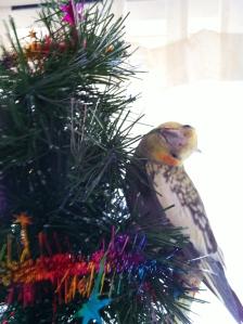 ... and ride on rotating Christmas trees.